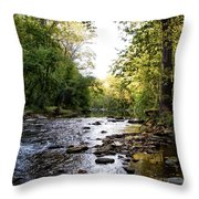 Wissahickon Creek Near Bells Mill Throw Pillow