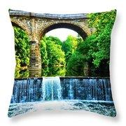 Wissahickon Falls Throw Pillow