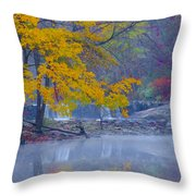 Wissahickon Morning In Autumn Throw Pillow
