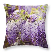 Wisteria Garden 2 Throw Pillow