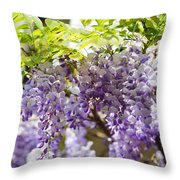 Wisteria Garden 9 Throw Pillow