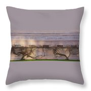 Wisteria In Winter Throw Pillow