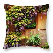 Wisteria On Home In Zellenberg France Throw Pillow