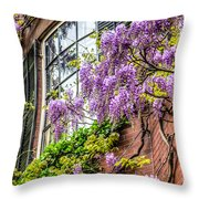 Wisteria Windows Throw Pillow