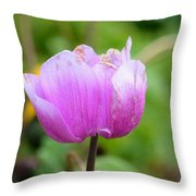 Wistfully Pink Throw Pillow