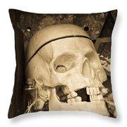 Witches Bookshelf Throw Pillow