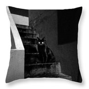 Witch's Cat In Moonlight... Throw Pillow