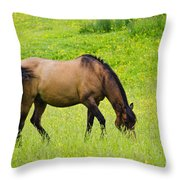 With A Swoosh Of The Tail Throw Pillow