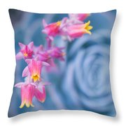 with affection - Echeveria glauca Throw Pillow