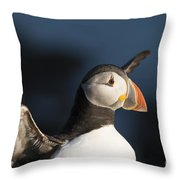With Outstretched Wings Throw Pillow