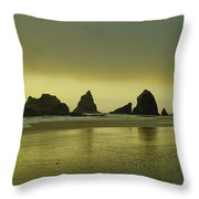 With The Ease Of A Sun Ray Throw Pillow