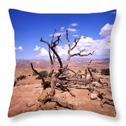 Withered Tree Paria Canyon Throw Pillow