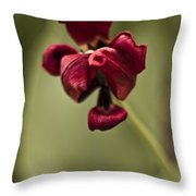 Withered Tulip Throw Pillow