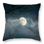 Within Her Misty Veil Throw Pillow
