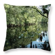 Withlacoochee River Reflections Throw Pillow
