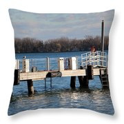 Without Fear Throw Pillow