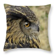 Wize Owl 2 Throw Pillow