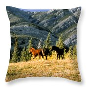 Wlid Brumbies Throw Pillow