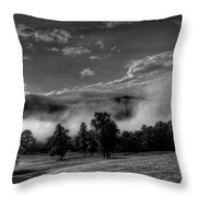 Wnc Morning In Black And White Throw Pillow