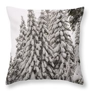 Wnter Snow At Shaver Lake Throw Pillow