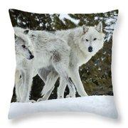 Wolf - Friend Throw Pillow