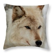 Wolf Expressions Throw Pillow