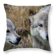 Wolf Glare II Throw Pillow