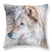 Wolf In Disguise Throw Pillow