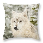 Wolf In Snow Throw Pillow