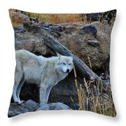 Wolf In The Wild Throw Pillow