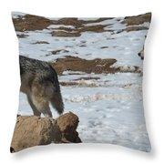 Wolf Pair Throw Pillow