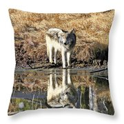 Wolf Pup Reflection Throw Pillow