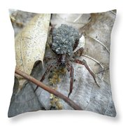Wolf Spider And Spiderlings Throw Pillow
