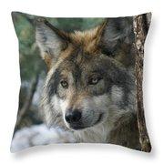 Wolf Upclose Throw Pillow