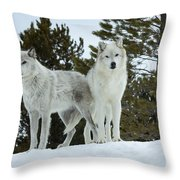 Wolves - Partners Throw Pillow