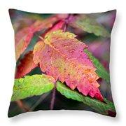 Wonder Leaf Throw Pillow