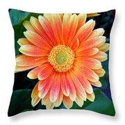 Wonderful Daisy Throw Pillow