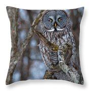 Wonderful Great Gray Throw Pillow