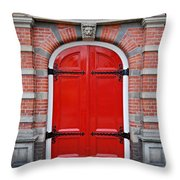 Wonderful Red Throw Pillow