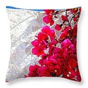 Wonderful Spain Throw Pillow