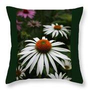 Wonderful White Cone Flower Throw Pillow