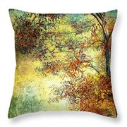 Wondering Throw Pillow by Bob Orsillo