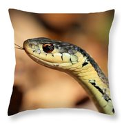 Wondering What I Am Throw Pillow