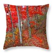 Wonders Of Autumn  Throw Pillow