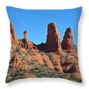 Wonders Of Nature Throw Pillow