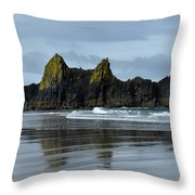 Wonders Of The Ocean Throw Pillow