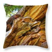 Wood Creature Throw Pillow by John Malone
