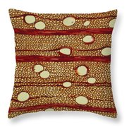 Wood Cross Section Throw Pillow