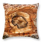Wood Detail Throw Pillow by Matthias Hauser