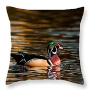 Wood Duck At Morning Throw Pillow